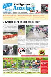 Nordlippischer Anzeiger Ausgabe 208