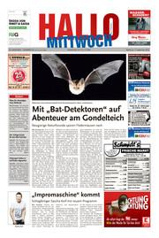 Hallo MITTWOCH Bad Pyrmont Ausgabe 036